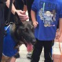 Sheriff's Office K-9, Thor, Honored